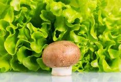 Fungo prataiolo del fungo e lattuga verde fresca Fotografie Stock Libere da Diritti