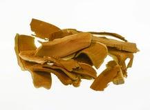 Fungo secco di Lingzhi Fotografia Stock