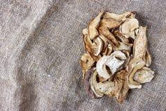 fungo secco su tela di sacco Funghi secchi di porcini di vista superiore immagini stock libere da diritti
