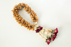 Fungus on brown dry garland with roses, crown flower and jasmine Royalty Free Stock Photos