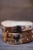 Fungus on expire bread Stock Image