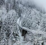 Funicolare nelle alpi svizzere nell'inverno Immagine Stock Libera da Diritti