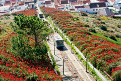 The funicular cabins in Nazare, Portugal Royalty Free Stock Image