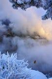 Funikuläres Gleis des Berges Stockfotos