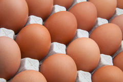 Funk's eggs Royalty Free Stock Photography