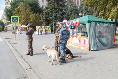 Funkcjonariusz policji na ulicie z psami Obraz Stock