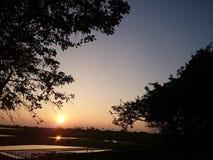 Funkeln-Sonnenuntergang Stockbilder