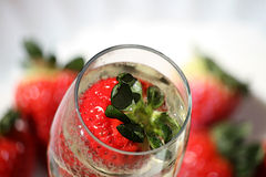 Funkelnde Champagne u. Stawberries stockbild
