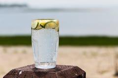 Funkelndes Wasser mit Zitrone und Kalk Stockfotos
