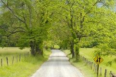 Funken-Weg in Cades-Bucht von rauchigen Bergen, TN, USA. Lizenzfreie Stockfotografie