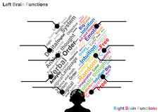 Funktion des linken und rechten Gehirns Lizenzfreie Stockfotografie