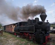 Funktionell trä-bränning lokomotiv arkivbild