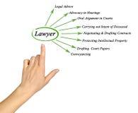 Funktioner av advokaten royaltyfri fotografi
