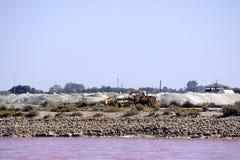 Funktionierendes Salz salziges Aigues-Mortes des Standorts See Stockfoto