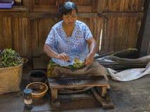 Funktionsduglig kvinna Fotografering för Bildbyråer