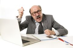 Funktionsduglig stressat för skallig 60-tal för affärsman och frustrerat på skrivbordet för bärbar dator för kontorsdator som ser arkivfoton