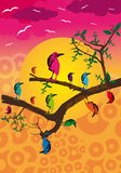 Funky birds. Illustration (vector) fantasy, abstract theme with birds Stock Photography