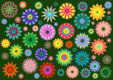Funky flowers Royalty Free Stock Images