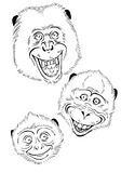 Funky Monkey Royalty Free Stock Images