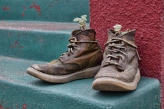 Funky Old Boots Planter. A pair of funky old boots made into planters on colorful porch steps Royalty Free Stock Image