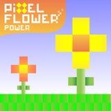 Funky pixel flowers Royalty Free Stock Image
