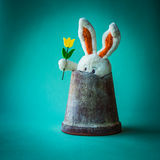 Funky teddy rabbit with yellow tulip Stock Images