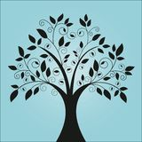 Funky tree. With leaves and coils (separate pieces for changes in vector format Stock Images