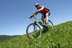 Funn with Donwhill bike Royalty Free Stock Photos