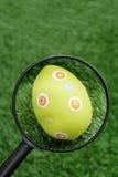 funnet easter ägg fotografering för bildbyråer