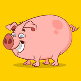 Funniest pig. Vector illustration.  Farm Animals Royalty Free Stock Photography