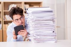 The funny accountant bookkeeper working in the office. Funny accountant bookkeeper working in the office Royalty Free Stock Image