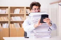 The funny accountant bookkeeper working in the office. Funny accountant bookkeeper working in the office stock images