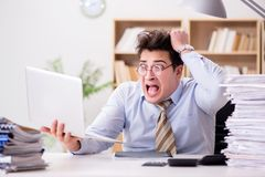 The funny accountant bookkeeper working in the office. Funny accountant bookkeeper working in the office Stock Image