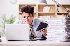 The funny accountant bookkeeper working in the office. Funny accountant bookkeeper working in the office stock photography