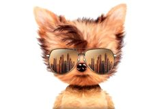 Dog in sunglasses on white background. Funny adorable dog wearing sunglasses on white background. Holiday and vacation concept. Realistic 3D illustration Stock Photography