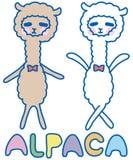Funny alpaca Royalty Free Stock Image