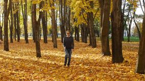 Funny and amusing curly man runs in place in the autumn park. Leaf fall in a town in sunny day. Beautiful nature. Funny and amusing guy runs in place in the stock video