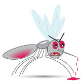 Funny angry mosquito drank blood Stock Image