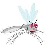 Funny angry mosquito Royalty Free Stock Images