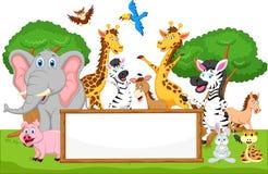 Funny animal cartoon with blank sign Stock Photos