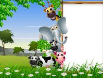 Funny animal cartoon collection with blank sign and tropical forest background