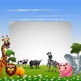 Funny animal cartoon collection with nature background and blank sign. Illustration of funny animal cartoon collection with nature background and blank sign Stock Photography