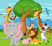 Funny animal cartoon Stock Photos