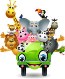 Funny Animal Cartoon On Green Car Royalty Free Stock Photos