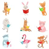 Funny Animal Characters Reading Books Set Royalty Free Stock Photography