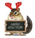 Funny animal chipmunk with christmas deer horns hold blackboard. Funny animal chipmunk with christmas horns hold blackboard with happy new year wish Stock Images