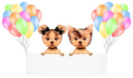 Funny animal keep a banner with balloons Stock Photography