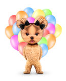 Funny animal keep a bunch of balloons Royalty Free Stock Photos