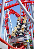 Funny animal roller coaster Royalty Free Stock Image