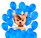 Funny animal surrounded by ballloons. And keep a balloon isolated on white background. Birthday and party concept. Realistic 3D illustration Royalty Free Stock Photo